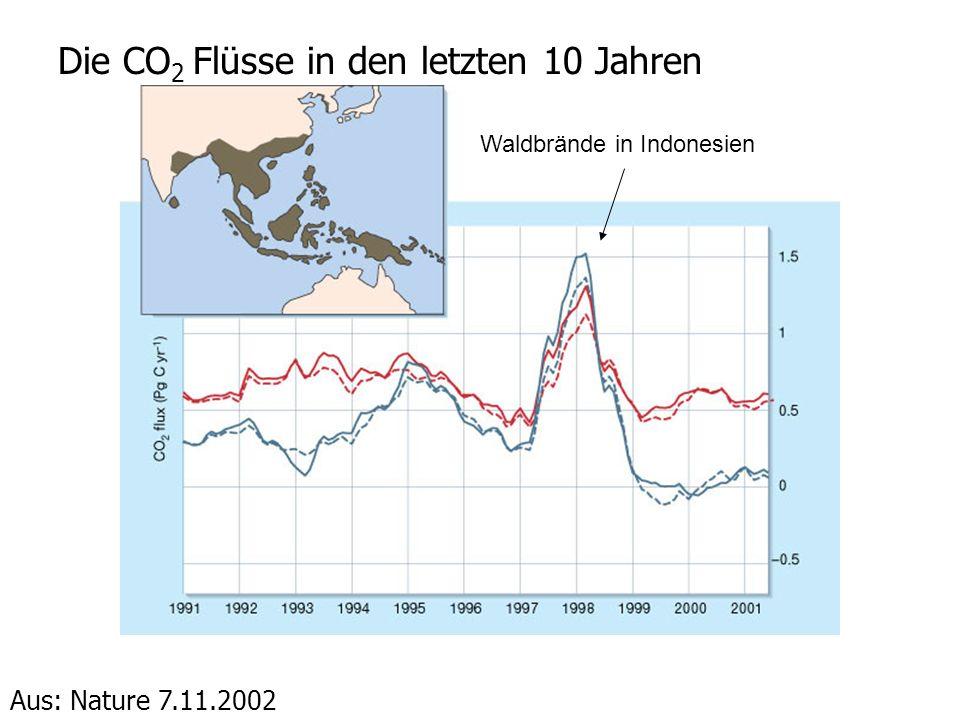 Die CO 2 Flüsse in den letzten 10 Jahren Aus: Nature 7.11.2002 Waldbrände in Indonesien