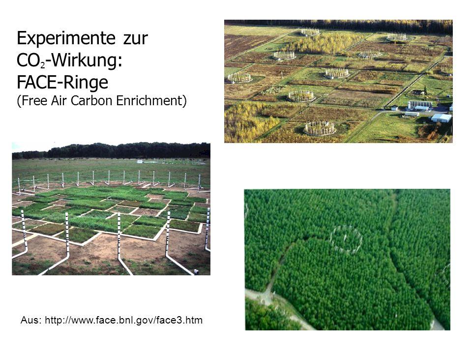 Experimente zur CO 2 -Wirkung: FACE-Ringe (Free Air Carbon Enrichment) Aus: http://www.face.bnl.gov/face3.htm