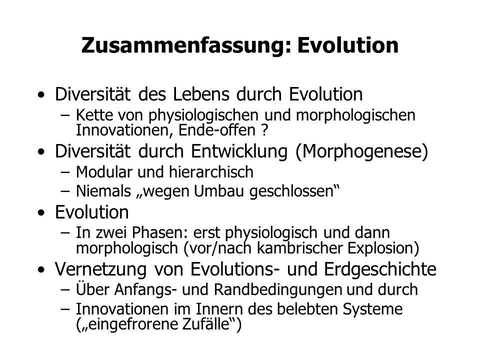 Zusammenfassung: Evolution Diversität des Lebens durch Evolution –Kette von physiologischen und morphologischen Innovationen, Ende-offen ? Diversität