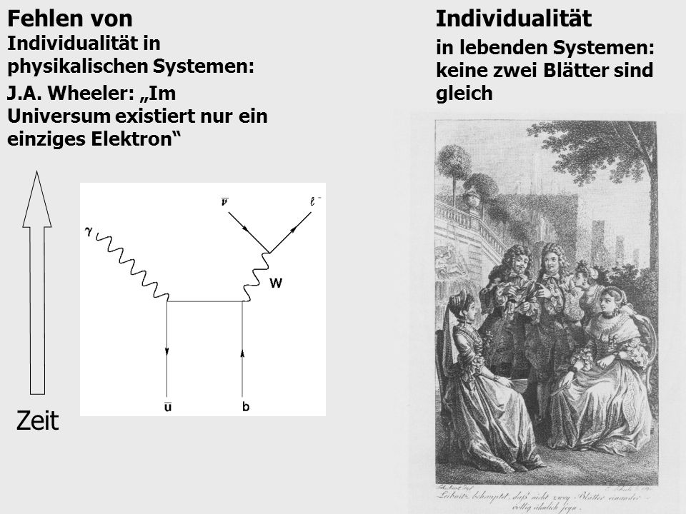 Fehlen von Individualität in physikalischen Systemen: J.A.