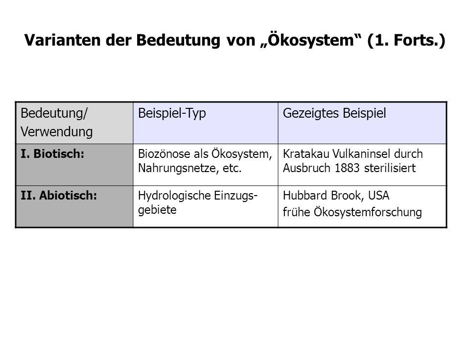 Bedeutung/ Verwendung Beispiel-TypGezeigtes Beispiel I.