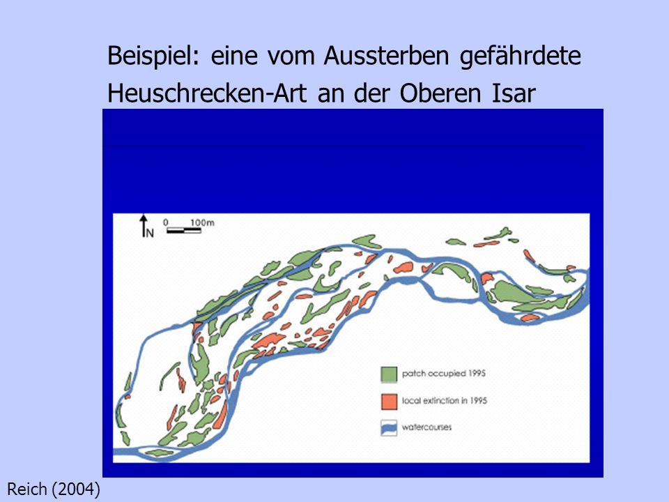 Beispiel: eine vom Aussterben gefährdete Heuschrecken-Art an der Oberen Isar Reich (2004)