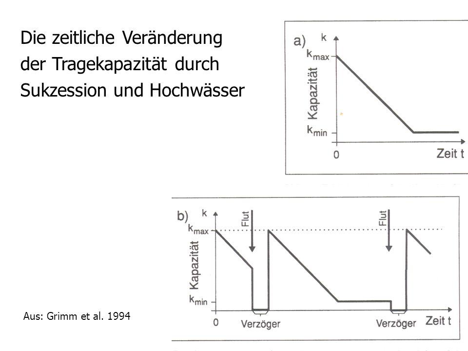 aus: Grimm et al. 1994 Begründung und Aussterben von Teilpopulationen