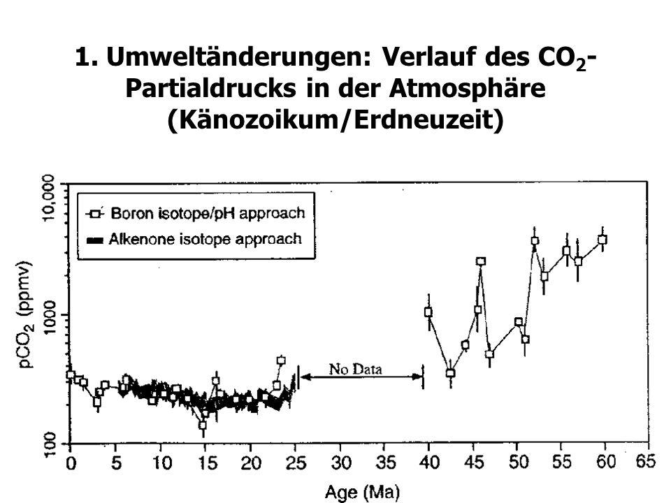 9 1. Umweltänderungen: Verlauf des CO 2 - Partialdrucks in der Atmosphäre (Känozoikum/Erdneuzeit)