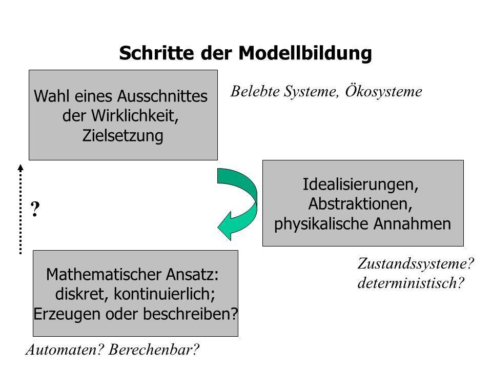 Schritte der Modellbildung Wahl eines Ausschnittes der Wirklichkeit, Zielsetzung Idealisierungen, Abstraktionen, physikalische Annahmen Mathematischer