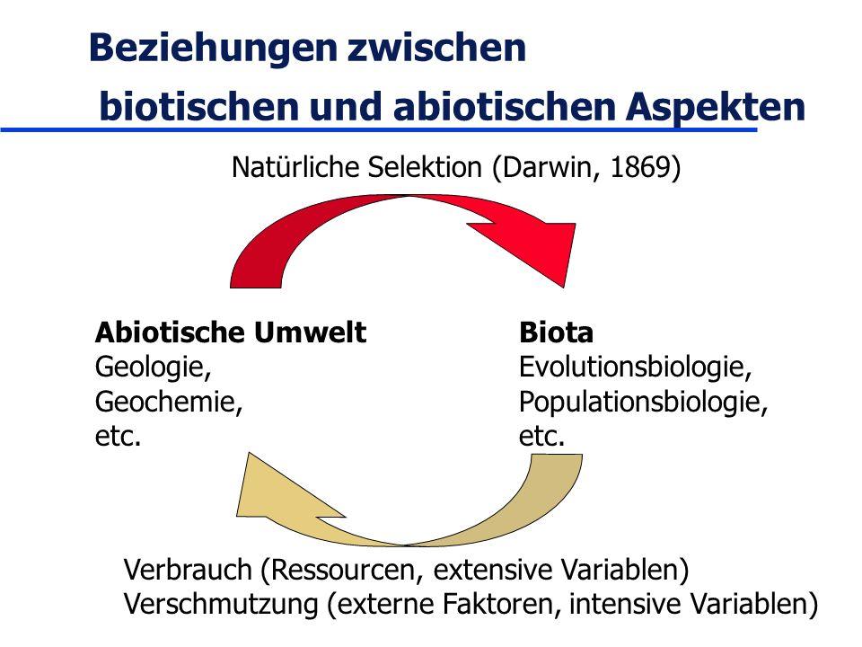 Beziehungen zwischen biotischen und abiotischen Aspekten Abiotische Umwelt Geologie, Geochemie, etc. Biota Evolutionsbiologie, Populationsbiologie, et