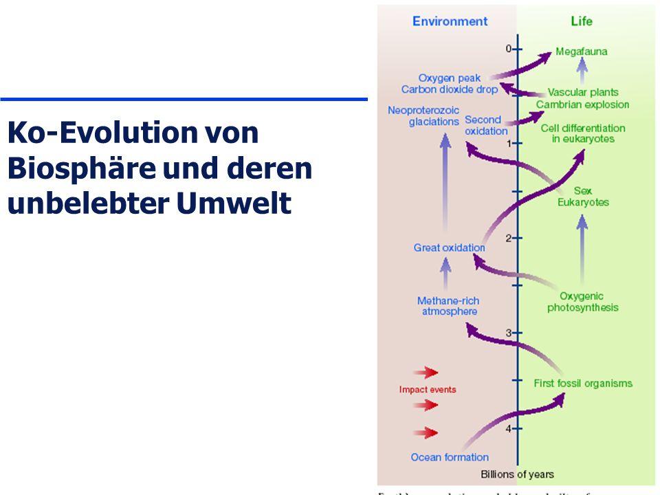 Ko-Evolution von Biosphäre und deren unbelebter Umwelt
