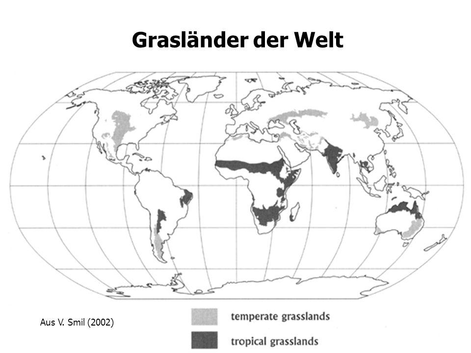 19 Aus V. Smil (2002) Grasländer der Welt