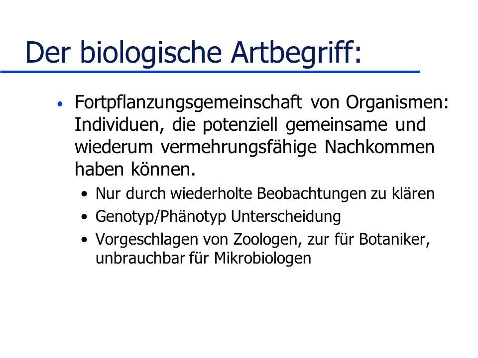 Der biologische Artbegriff: Fortpflanzungsgemeinschaft von Organismen: Individuen, die potenziell gemeinsame und wiederum vermehrungsfähige Nachkommen