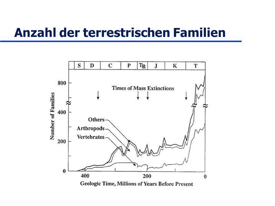 Anzahl der terrestrischen Familien