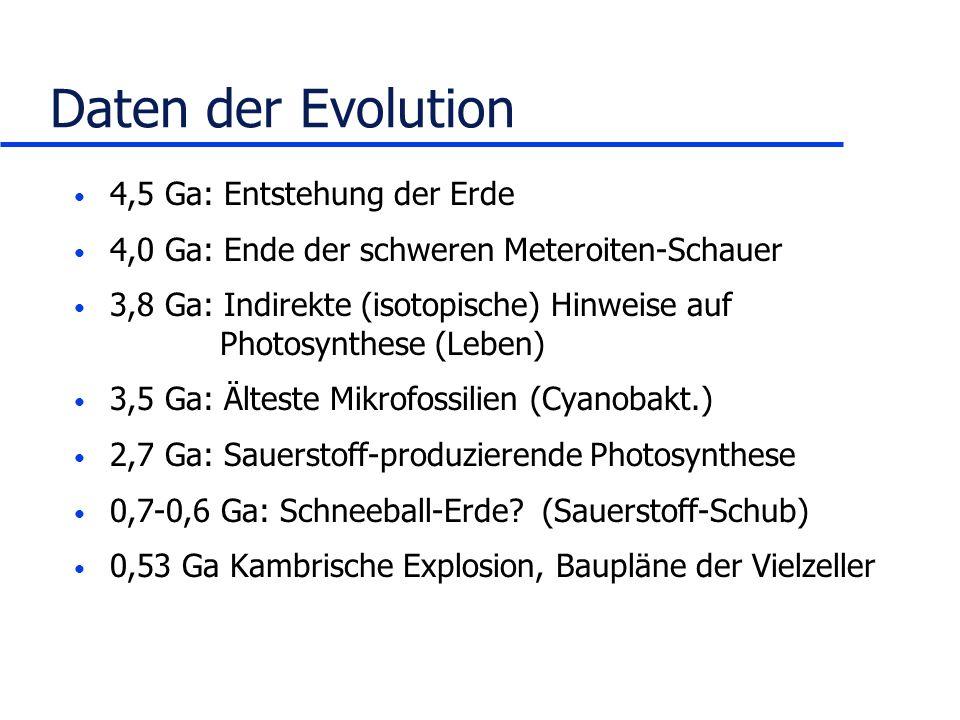 Daten der Evolution 4,5 Ga: Entstehung der Erde 4,0 Ga: Ende der schweren Meteroiten-Schauer 3,8 Ga: Indirekte (isotopische) Hinweise auf Photosynthes