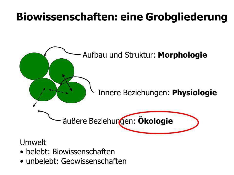 Biowissenschaften: eine Grobgliederung Innere Beziehungen: Physiologie Aufbau und Struktur: MorphologieUmwelt belebt: Biowissenschaften unbelebt: Geow