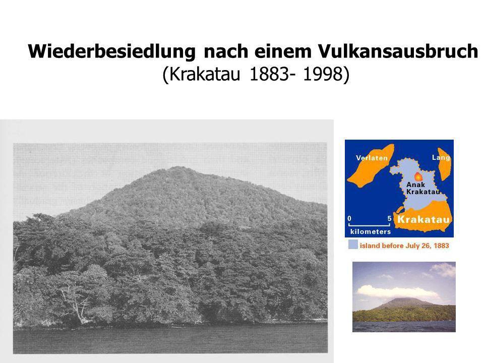 Wiederbesiedlung nach einem Vulkansausbruch (Krakatau 1883- 1998) aus: Whittaker (1998)