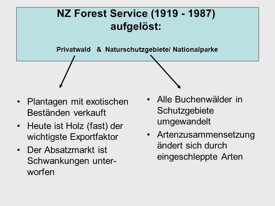 Plantagen mit exotischen Beständen verkauft Heute ist Holz (fast) der wichtigste Exportfaktor Der Absatzmarkt ist Schwankungen unter- worfen Alle Buchenwälder in Schutzgebiete umgewandelt Artenzusammensetzung ändert sich durch eingeschleppte Arten NZ Forest Service (1919 - 1987) aufgelöst: Privatwald & Naturschutzgebiete/ Nationalparke