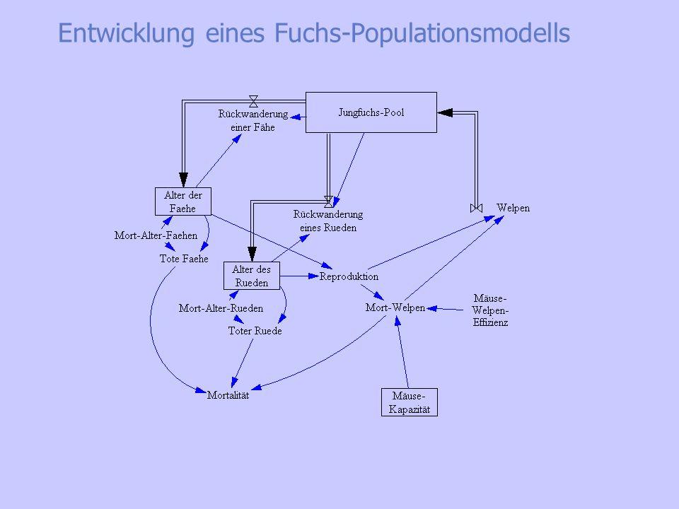 Entwicklung eines Fuchs-Populationsmodells Ein reproduzierendes Paar belegt ein Revier Nichtreproduzierende Jungtiere werden +- geduldet (Wanderungen