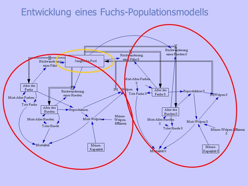 Entwicklung eines Fuchs-Populationsmodells Erweiterung zum Modell mit zwei Revieren: Fuchsrevier Jungfuchspool Fuchsrevier II