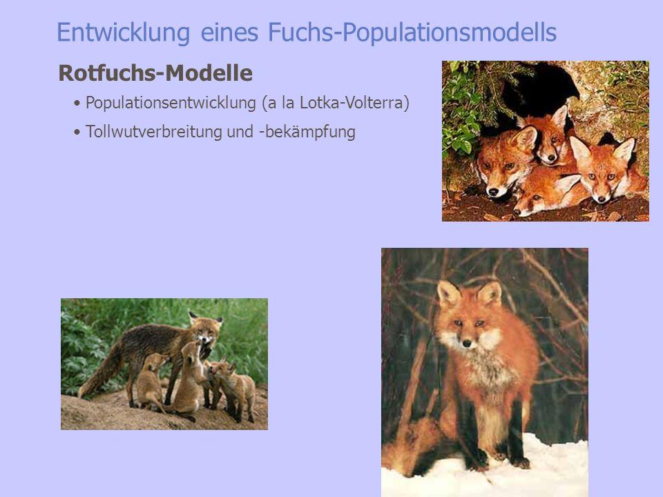 Entwicklung eines Fuchs-Populationsmodells In D größter der allgemein verbreiteten räuberischen Säuger +- global verbreitet, extrem anpassungsfähig Starkes Sozialverhalten Potentiell Hauptüberträger der Tollwut Der Rotfuchs
