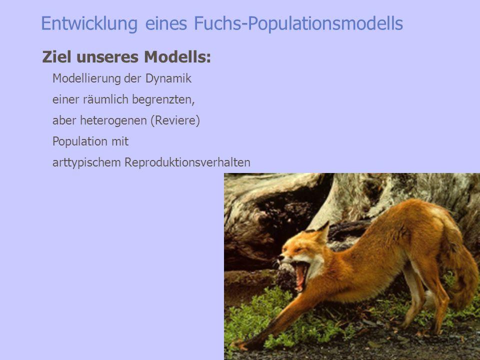 Entwicklung eines Fuchs-Populationsmodells Mortalität (Jagd, Seuchen) Verhaltensbiologie (Literatur-Links am Ende der Präsentation!) Populationsentwic