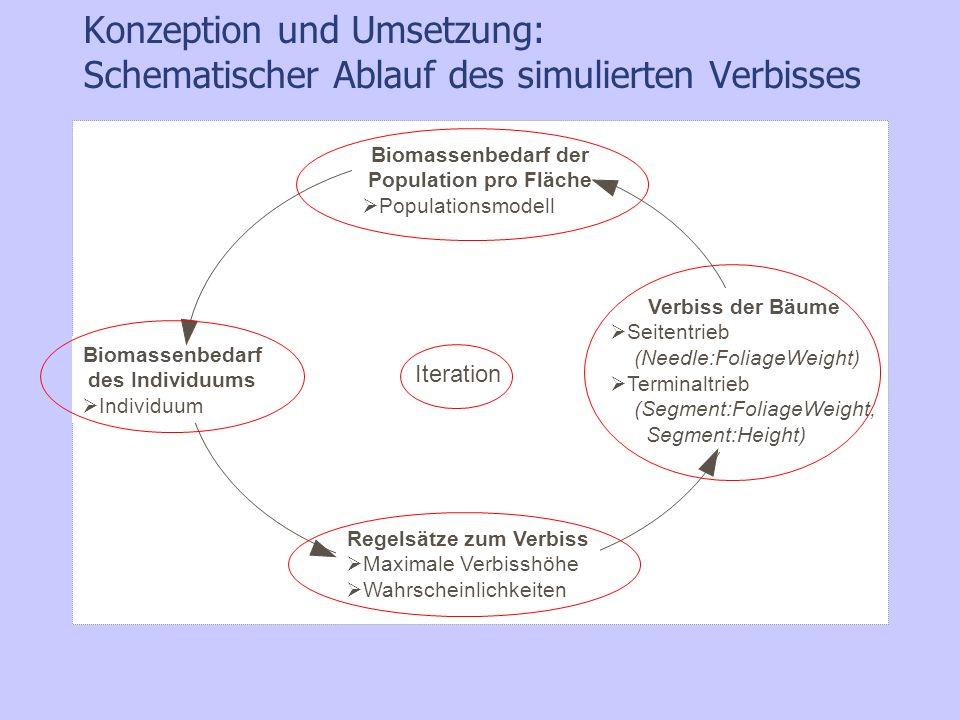 Konzeption und Umsetzung: Schematischer Ablauf des simulierten Verbisses Iteration Biomassenbedarf der Population pro Fläche Populationsmodell Biomass