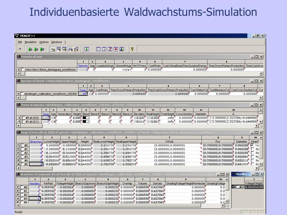 Simulationsergebnisse : Entmischung durch Verbiss II Beeinflussung der Baumarten- zusammensetzung der Bestände durch Verbiss.