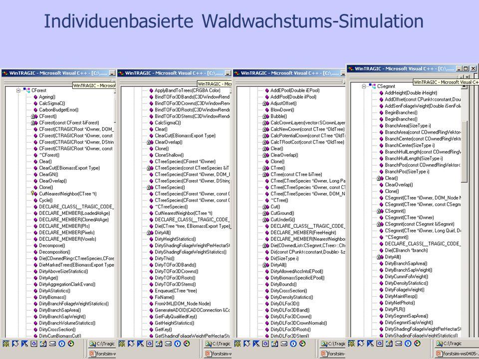 Simulationsergebnisse: Entmischung durch Verbiss III Entwicklung der Artenzusammensetzung bei unterschiedlicher Verbissbelastung Verschiebung des Konkurrenzgefüges zweier Baumarten