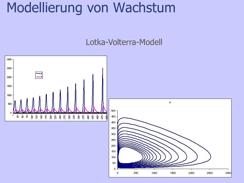 Modellierung von Wachstum Lotka-Volterra-Modell