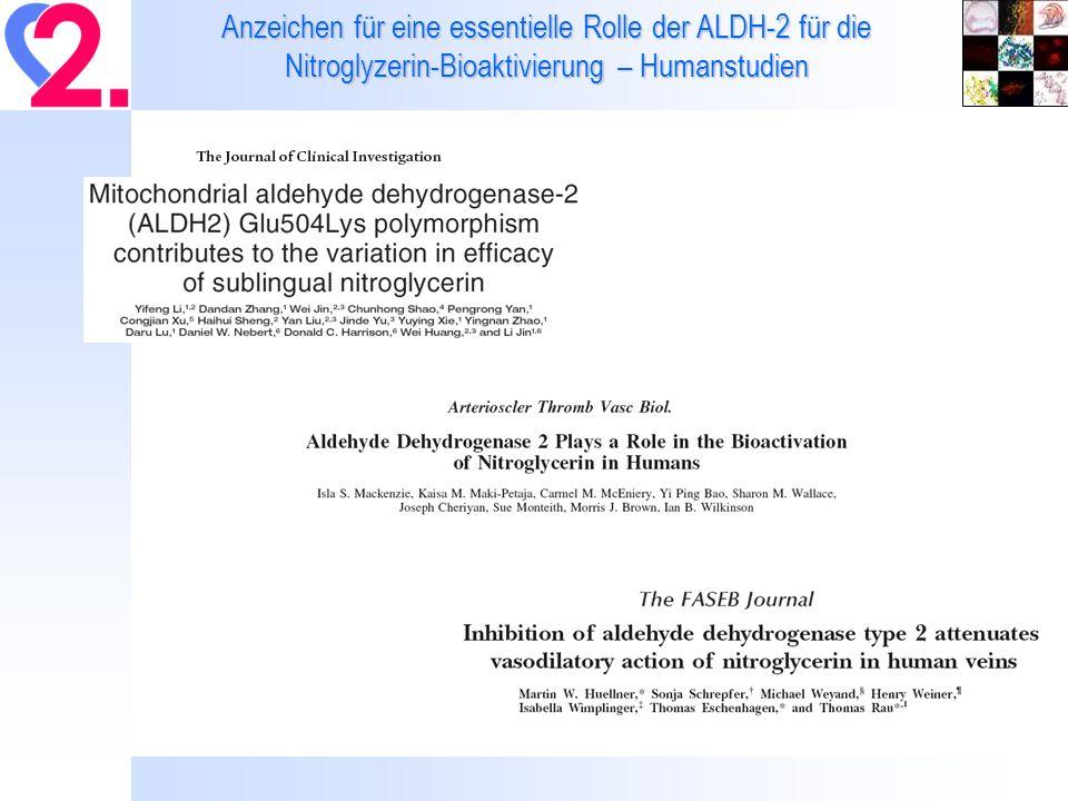 Thromboxan Spiegel im Serum – Effekte einer in vivo Bolus-Gabe verschiedener Nitrate±Lipons.