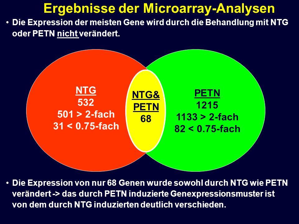 Die Expression der meisten Gene wird durch die Behandlung mit NTG oder PETN nicht verändert. Die Expression von nur 68 Genen wurde sowohl durch NTG wi