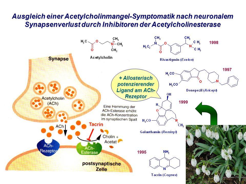 Ausgleich einer Acetylcholinmangel-Symptomatik nach neuronalem Synapsenverlust durch Inhibitoren der Acetylcholinesterase + Allosterisch potenzierender Ligand am ACh- Rezeptor 1997 1995 1998 1999