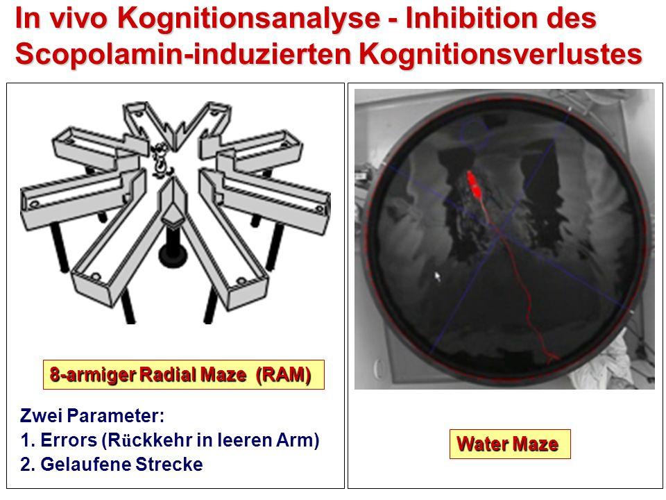 In vivo Kognitionsanalyse - Inhibition des Scopolamin-induzierten Kognitionsverlustes 8-armiger Radial Maze (RAM) Zwei Parameter: 1.