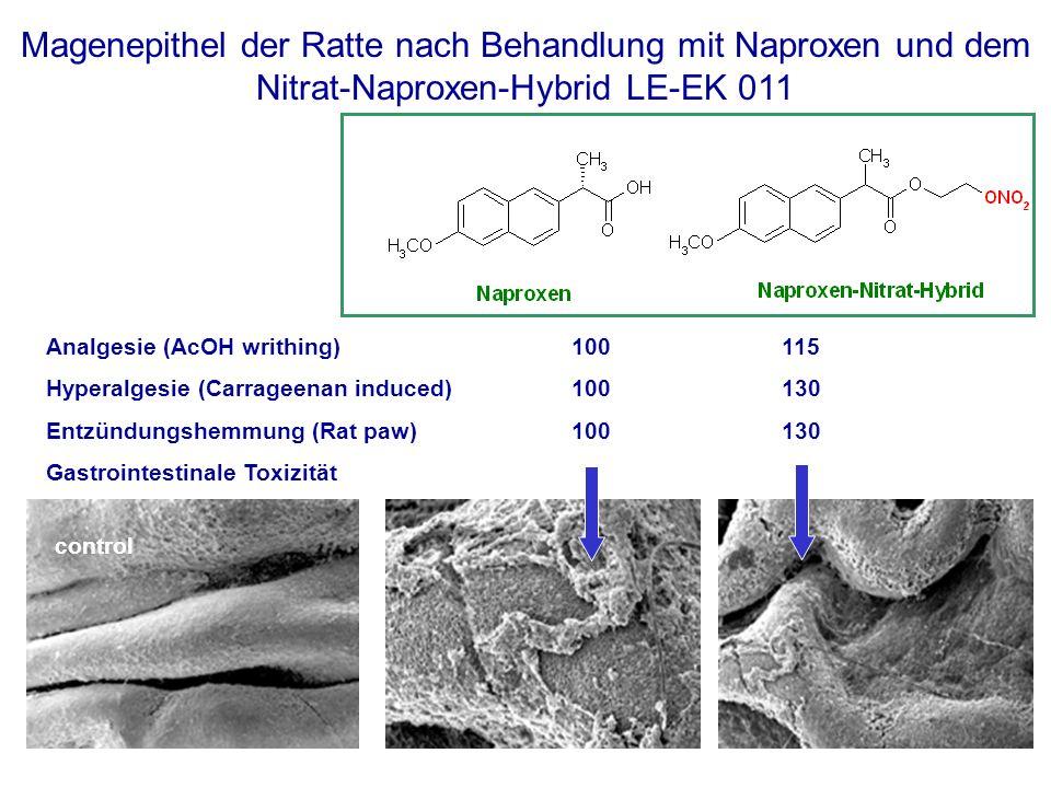 Analgesie (AcOH writhing) 100 115 Hyperalgesie (Carrageenan induced)100130 Entzündungshemmung (Rat paw)100130 Gastrointestinale Toxizität control Magenepithel der Ratte nach Behandlung mit Naproxen und dem Nitrat-Naproxen-Hybrid LE-EK 011