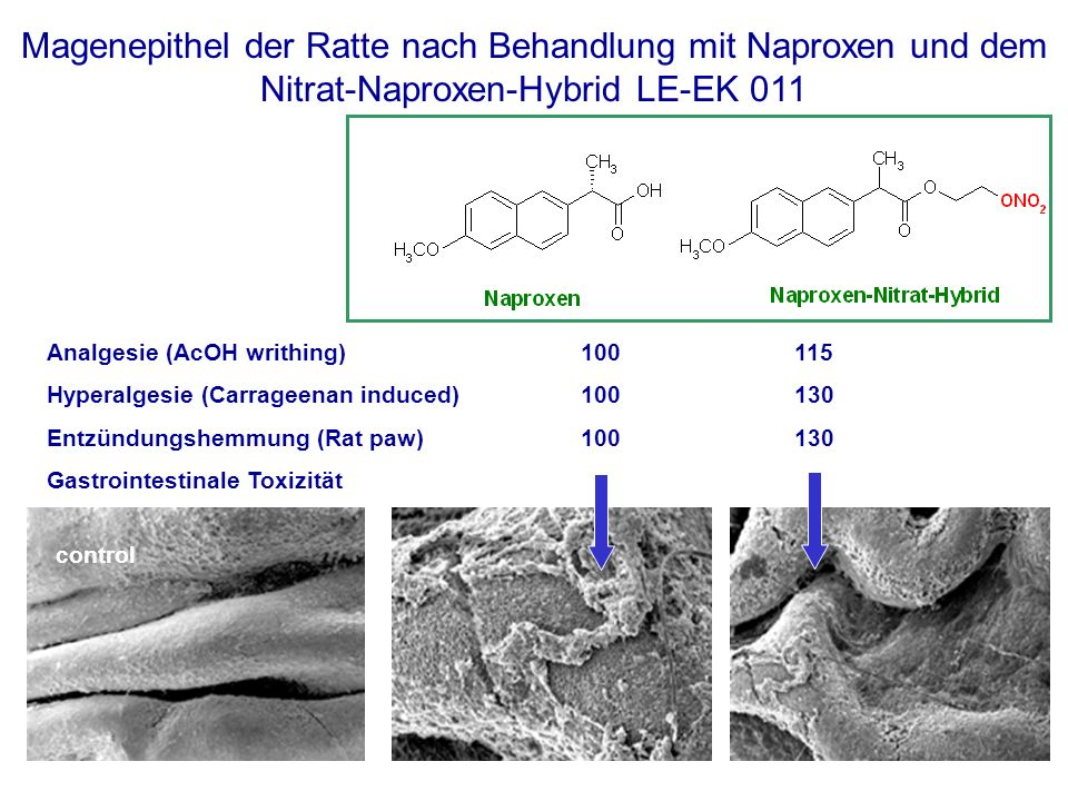 Analgesie (AcOH writhing) 100 115 Hyperalgesie (Carrageenan induced)100130 Entzündungshemmung (Rat paw)100130 Gastrointestinale Toxizität control Mage