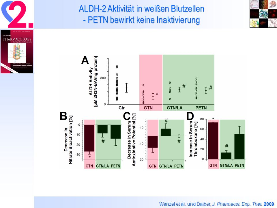 ALDH-2 Aktivität in weißen Blutzellen - PETN bewirkt keine Inaktivierung Wenzel et al.