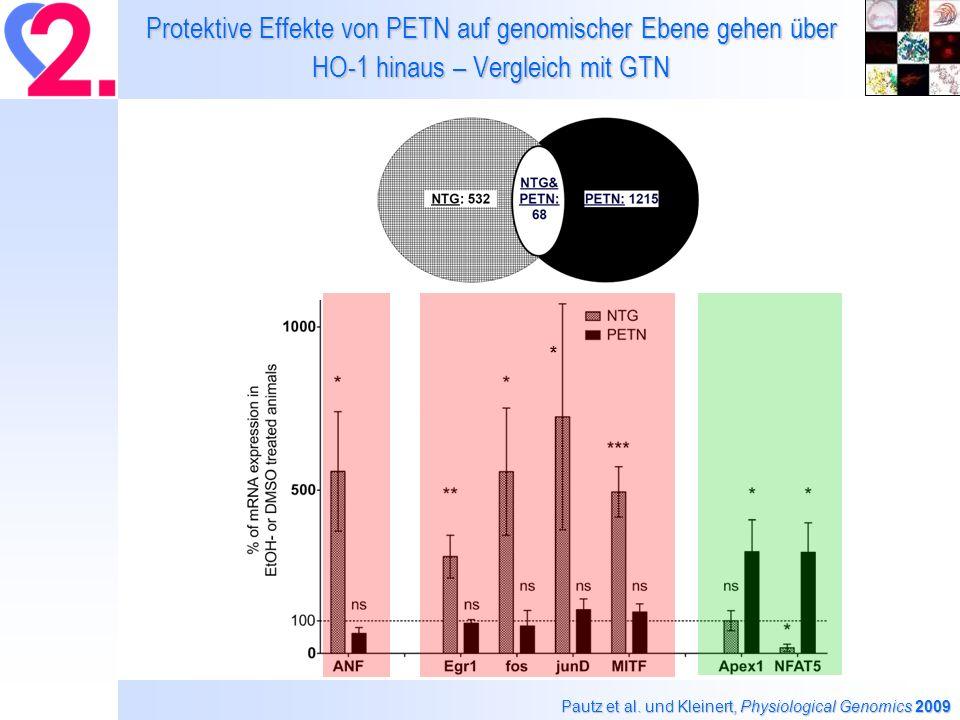 Protektive Effekte von PETN auf genomischer Ebene gehen über HO-1 hinaus – Vergleich mit GTN Pautz et al.