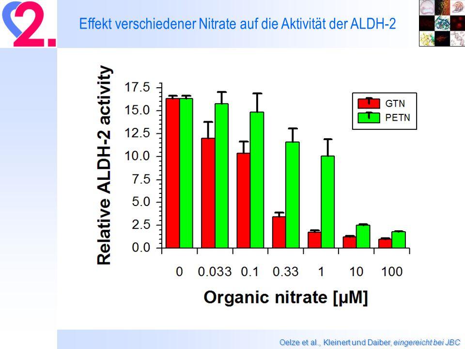 Effekt verschiedener Nitrate auf die Aktivität der ALDH-2 Oelze et al., Kleinert und Daiber, eingereicht bei JBC