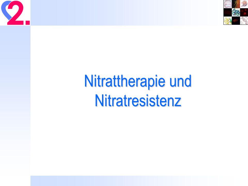 Nitrattherapie und Nitratresistenz
