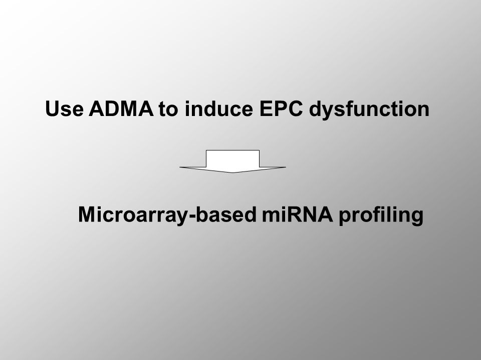 Use ADMA to induce EPC dysfunction Microarray-based miRNA profiling