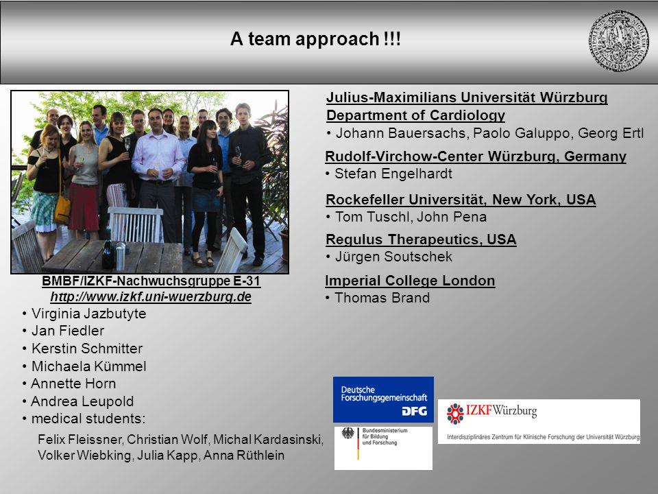 Julius-Maximilians Universität Würzburg Department of Cardiology Johann Bauersachs, Paolo Galuppo, Georg Ertl A team approach !!! Rockefeller Universi