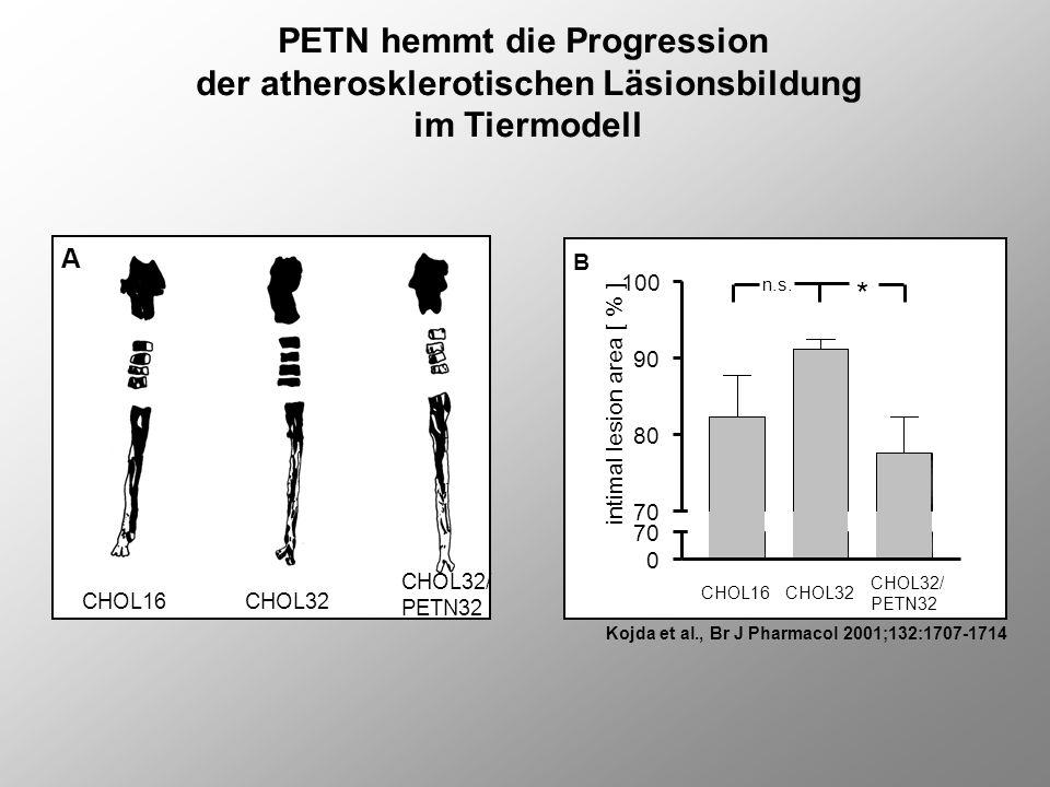 PETN hemmt die Progression der atherosklerotischen Läsionsbildung im Tiermodell Kojda et al., Br J Pharmacol 2001;132:1707-1714 CHOL16CHOL32 CHOL32/ P