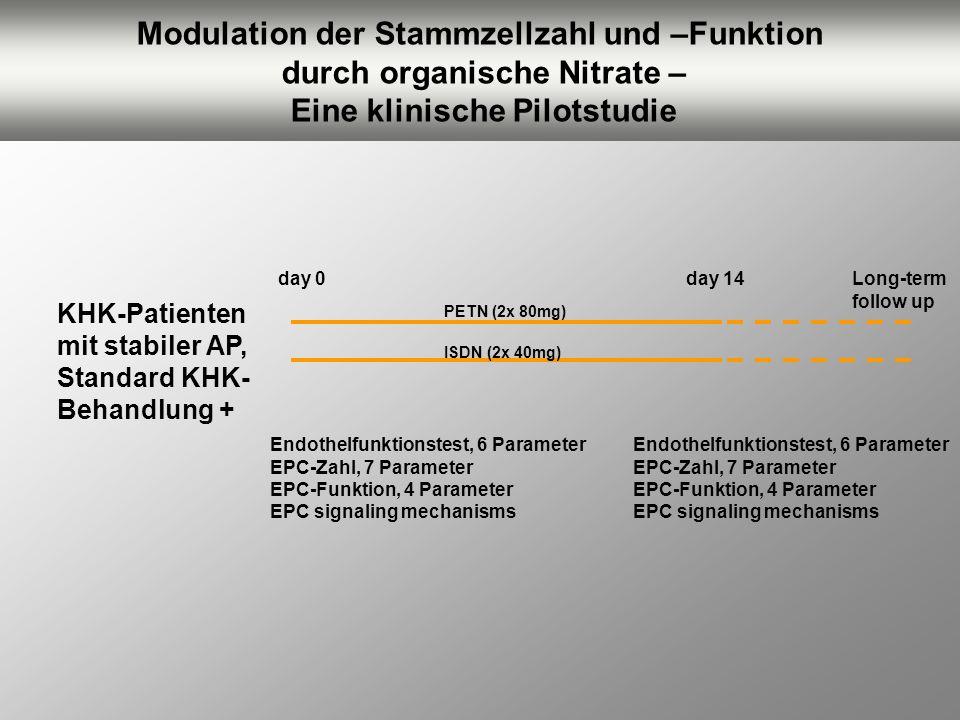 Modulation der Stammzellzahl und –Funktion durch organische Nitrate – Eine klinische Pilotstudie KHK-Patienten mit stabiler AP, Standard KHK- Behandlu