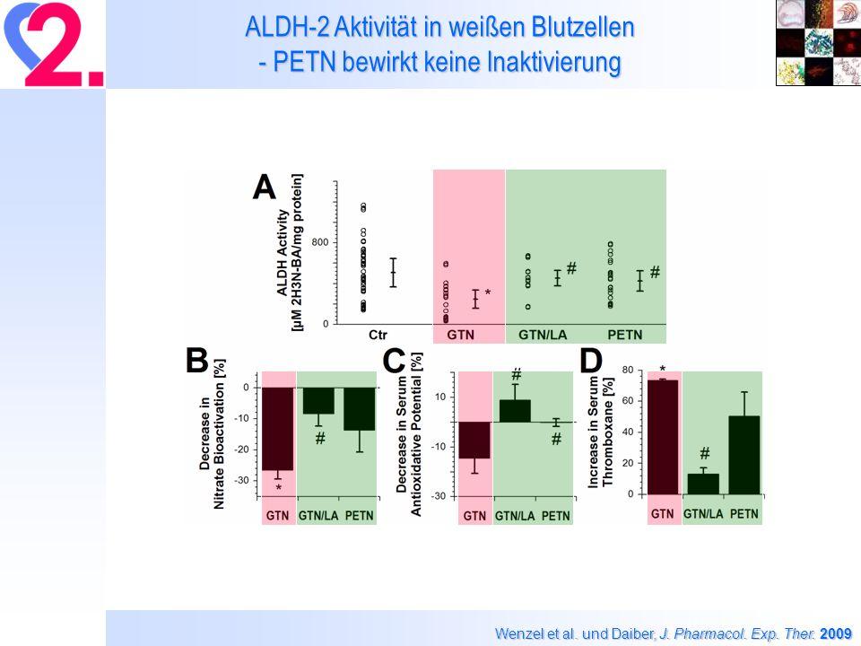 Daiber, Kamuf und Kleinert, unpublished GTN- und PETN-abhängige ROS/RNS Bildung (L-012 ECL) durch die ALDH-2 (fixe Konz.)