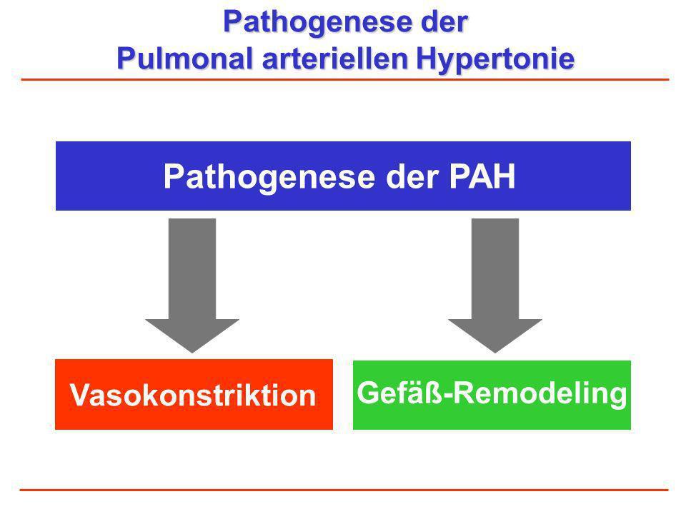 Pathogenese der Pulmonal arteriellen Hypertonie Pathogenese der PAH Vasokonstriktion Gefäß-Remodeling