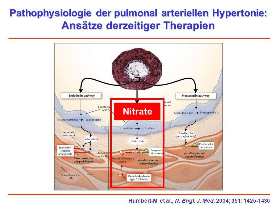 Pathophysiologie der pulmonal arteriellen Hypertonie: Ansätze derzeitiger Therapien Humbert-M et al., N. Engl. J. Med. 2004; 351: 1425-1436 Nitrate