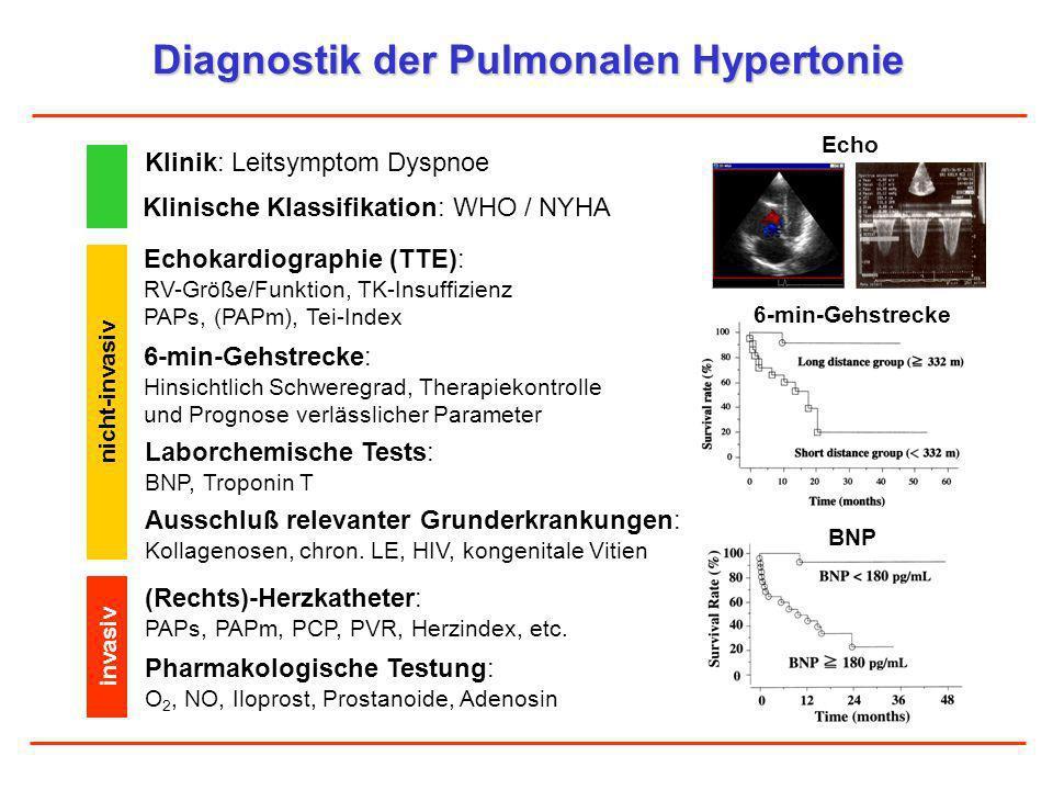 Diagnostik der Pulmonalen Hypertonie Klinik: Leitsymptom Dyspnoe Echokardiographie (TTE): RV-Größe/Funktion, TK-Insuffizienz PAPs, (PAPm), Tei-Index 6