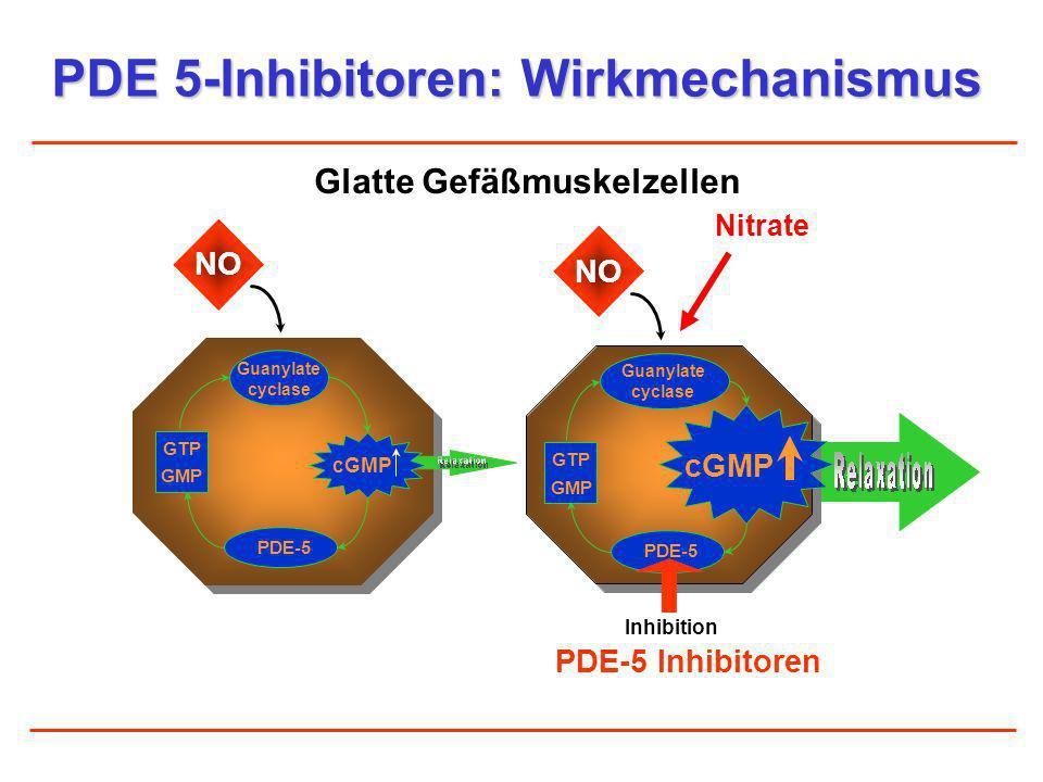 PDE 5-Inhibitoren: Wirkmechanismus Guanylate cyclase NO cGMP PDE-5 Inhibition PDE-5 Inhibitoren GMP GTP Glatte Gefäßmuskelzellen NO Guanylate cyclase