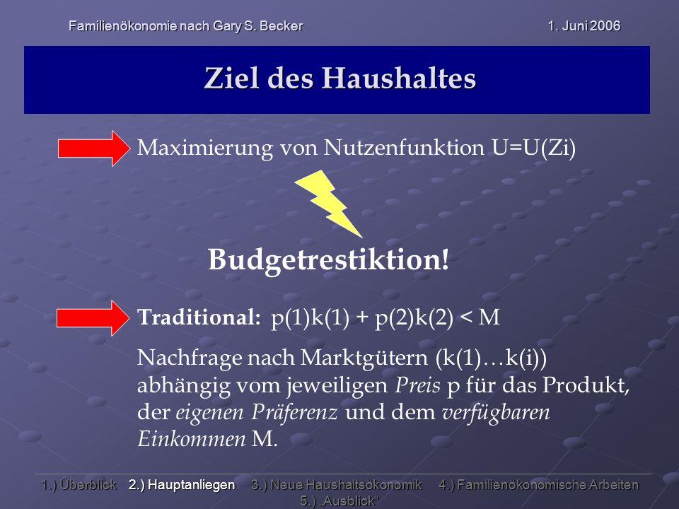 Ziel des Haushaltes Maximierung von Nutzenfunktion U=U(Zi) Budgetrestiktion! Traditional: p(1)k(1) + p(2)k(2) < M Nachfrage nach Marktgütern (k(1)…k(i