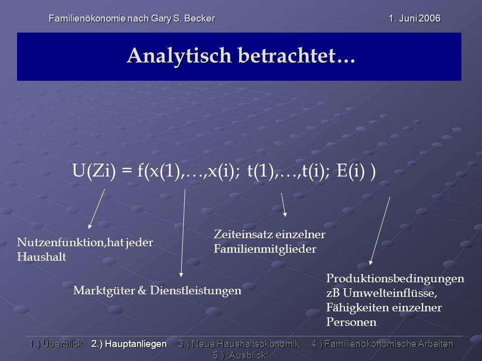 Analytisch betrachtet… U(Zi) = f(x(1),…,x(i); t(1),…,t(i); E(i) ) Nutzenfunktion,hat jeder Haushalt Marktgüter & Dienstleistungen Zeiteinsatz einzelne