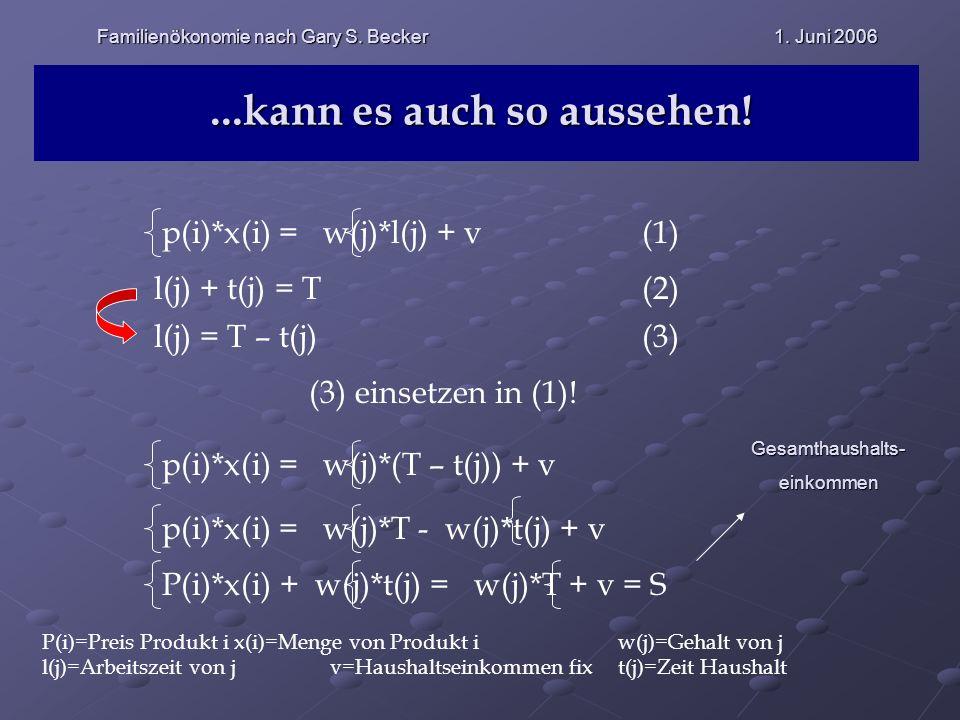 ...kann es auch so aussehen! p(i)*x(i) = w(j)*l(j) + v(1) l(j) + t(j) = T (2) l(j) = T – t(j) (3) (3) einsetzen in (1)! p(i)*x(i) = w(j)*(T – t(j)) +