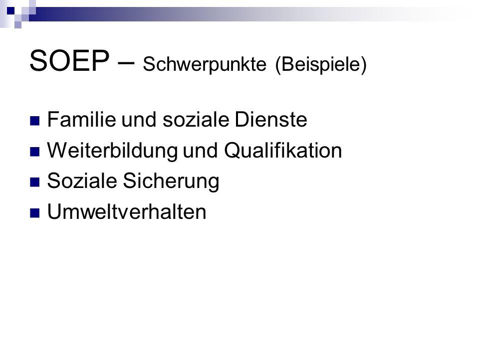 SOEP – Schwerpunkte (Beispiele) Familie und soziale Dienste Weiterbildung und Qualifikation Soziale Sicherung Umweltverhalten