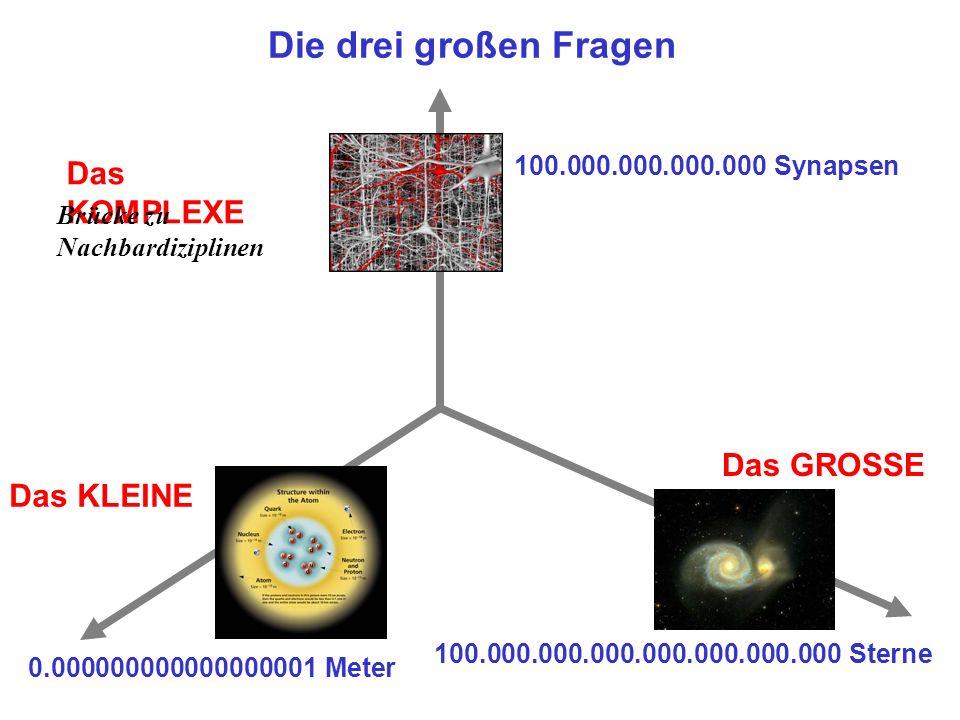 Die drei großen Fragen Das KOMPLEXE Das GROSSE Das KLEINE 100.000.000.000.000.000.000.000 Sterne 0.000000000000000001 Meter 100.000.000.000.000 Synapsen Brücke zu Nachbardiziplinen